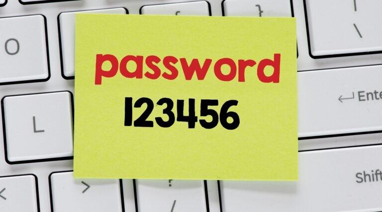 Správa hesel dovoluje volit komplikovaná a náhodná hesla